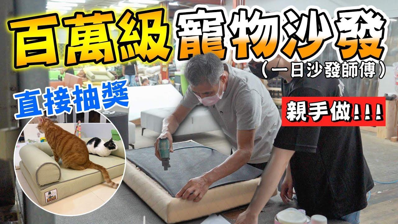 百萬級寵物沙發!老人親手做直接抽獎送大家『一日沙發師傅』Million-level pet sofa