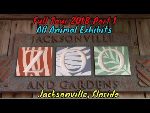 Jacksonville Zoo and Gardens Full Tour Part 1 - Jacksonville, Florida