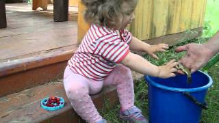 OMG!!! Baby girl touching real fish for the first time! It`s too cute!!!