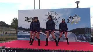 バファローズ宮崎春季キャンプ2019 BsGirls【Changed】