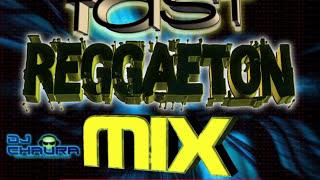 Fast Reggaeton Mix  Old School - Dj Chaura y Dj Shalo (2014)
