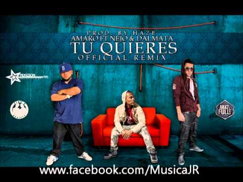 Amaro Ft. Ñejo & Dalmata -- Tu Quieres (Official Remix) (Prod. By Haze)