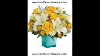 calgary flower delivery cheap