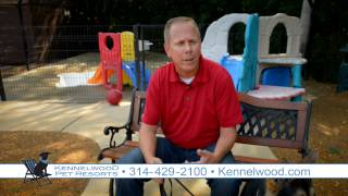 How To Teach Dog Owners To Train Their Dogs At Kennelwood Pet Resorts
