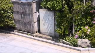 横井小楠の福井での寄留宅跡。福井市の足羽川沿いにある。幕末期、肥後...