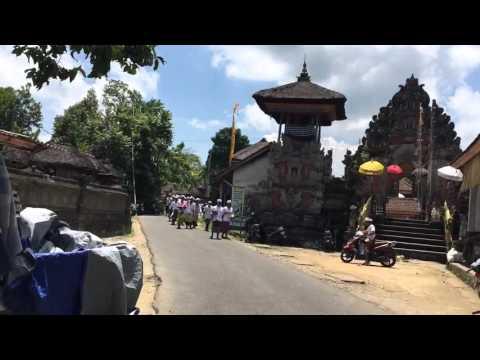 Bali Safe Driving Driverstrust