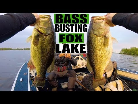 BASS BUSTING FOX LAKE
