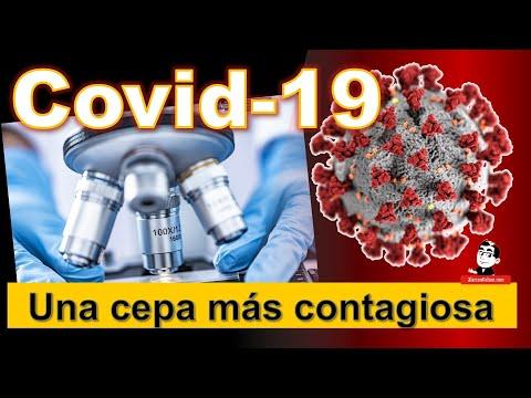 Habría una cepa más contagiosa del virus ☣ Cifras de la pandemia COVID 19 ☣ Septiembre 24 2020
