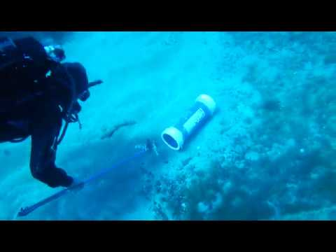 """Lionfish removals from Protaras' wrecks by """"Enalia Physis"""" and the """"DFMR"""" on 18/03/2019"""