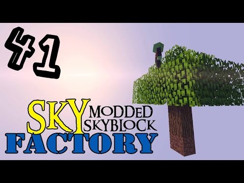 SKYFACTORY E41 Time Torch, Trophy Room 2 E Sacred Rubber Tree