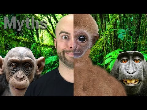 7 MYTHS You Still Believe About EVOLUTION