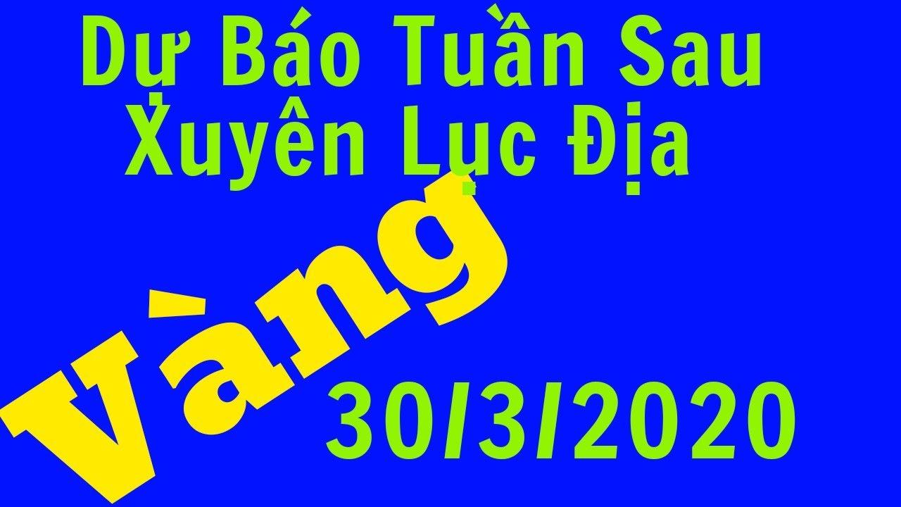 Giá Vàng Hôm Nay Ngày 30/3/2020-Vàng SJC 9999 24k Bao Nhiêu 1 Chỉ