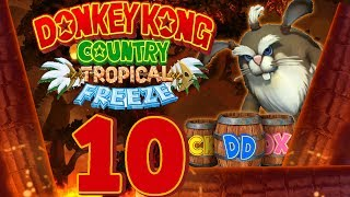 Let's Play Donkey Kong Country Tropical Freeze Part 10: Waldbrand und Überfischung