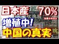日本産のアレが中国本土を凌駕する真実に中国人衝撃「7割は日本製だぞ」【海外の反応】