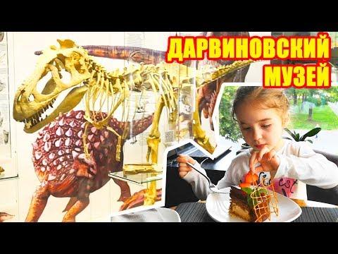 Куда сходить с детьми в Москве? Конечно же в Дарвиновский музей