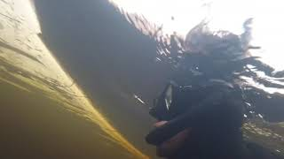 Подводная охота в ноябре на Кольском полуострове