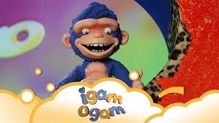 Igam Ogam: Want it back! S1 E5 | WikoKiko Kids TV