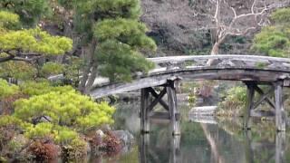 Japanese Garden - Koi, Bridge And Fiskfiskfisk