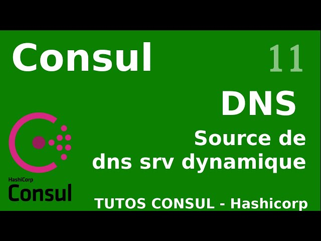 CONSUL - 11. SOURCE DE DNS SRV