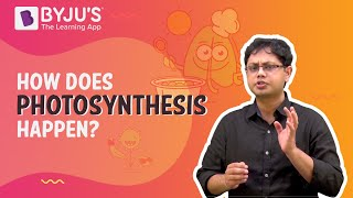 Photosynthesis - How Does Photosynthesis Happen? | Learn with BYJU'S