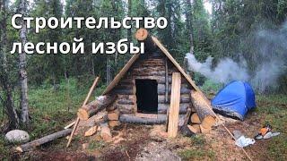 """Лесная изба """"глухариная"""" строительство.Жизнь в тайге. №2"""