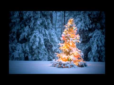 Silver Bells - The Starlites Singers and Orchestra