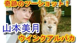 【関連動画】 山本美月、トリンドル玲奈、朝比奈彩、高橋メアリージュン...