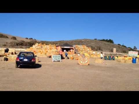Six state story: Hwy1 - Big Sur (Santa Cruz, Rodoni Farm)