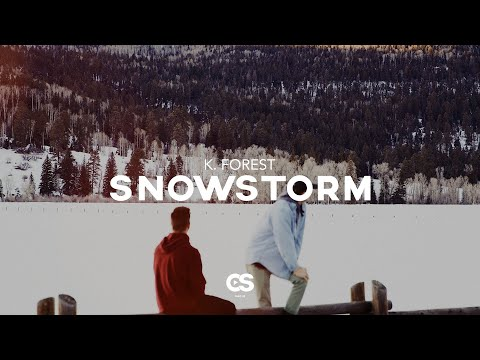 K. Forest - Snowstorm