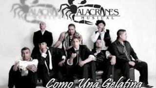 Alacranes Musical ft Espinoza Paz  - Como Una Gelatina - [completa] Estreno 2009