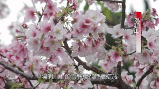 3D Full HD 1080p  陽明山 地熱谷 龍鳳谷 擎天崗 山海行 導覽  影片 素材拍攝 S07