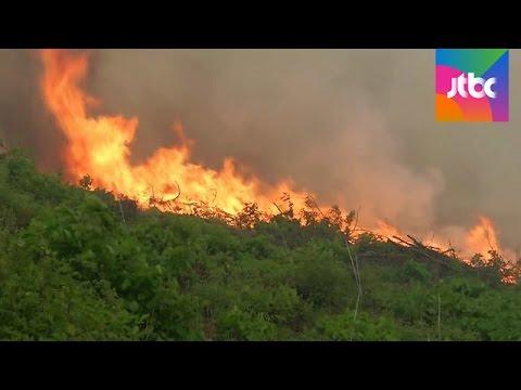 건조한데 바람까지…강원 삼척·강릉서 대형 산불 확산