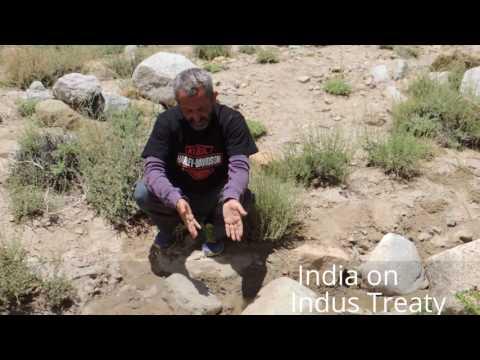 Indus Waters Treaty - An example of brotherhood by Aamodini Arya