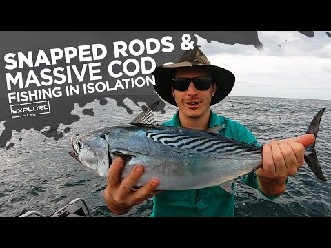 MASSIVE COD, SNAPPED FISHING RODS AND NOT A CLUE!! EXPLORE OFFSHORE
