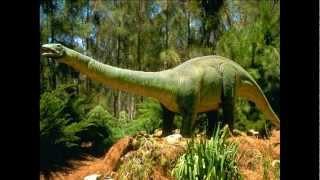 Интересные факты о природе. Второй выпуск.(, 2013-03-29T09:29:57.000Z)