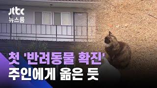 기도원 살던 새끼 고양이가…국내 첫 '반려동물 확진' / JTBC 뉴스룸