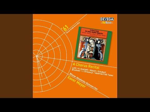 Zigeunerlieder, Op. 103: No. 2, Hochgetürmte Rimaflut, wie bist du trüb