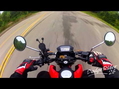 Honda Grom is Perfect Completely Stock