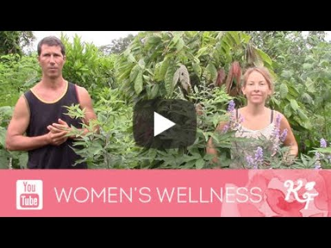 How to balance hormones with natural plant medicine