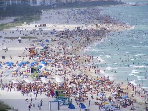 Don't Spring Break In Miami