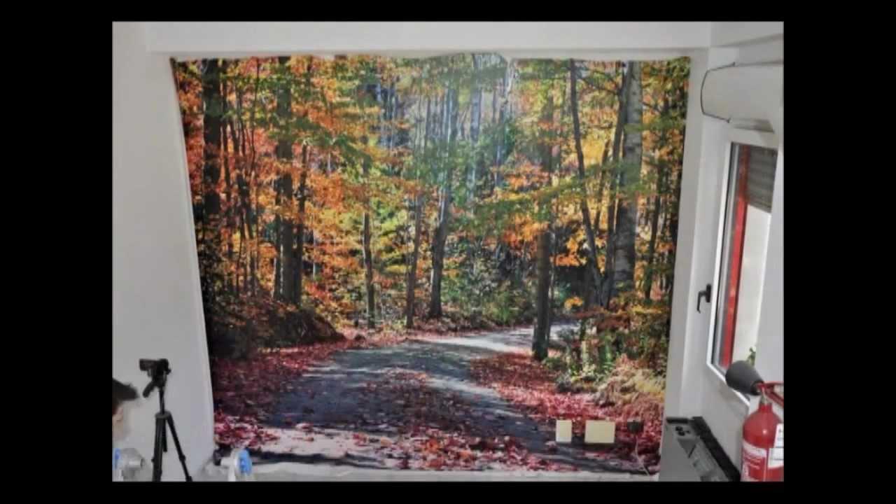 Abc dec posa carte da parati moderne personalizzabili for Carta da parati moderne foto