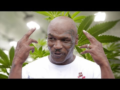 Mike Tyson Is Building A WEED RANCH in California | What's Trending Now! Mp3