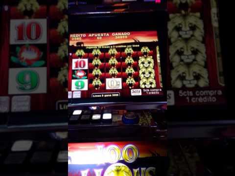 Así se gana  en el casino de Palermo