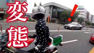 ZOZOスーツを着たライダー現る【モトブログ】 thumbnail