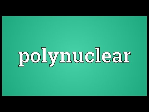 Header of polynuclear
