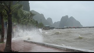Bão số 4 đổ bộ Quảng Bình - Quảng Trị gió giật cấp 10
