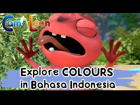 Hilarious Children Cartoon | Cam & Leon Explore Colours in Bahasa Indonesia! | Cam & Leon