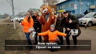 UTV. Новости севера Башкирии за 19 ноября (Нефтекамск, Дюртюли, Янаул)