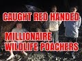 Millionaire Poacher Arrested - Black Panther Taken From Sanctuary
