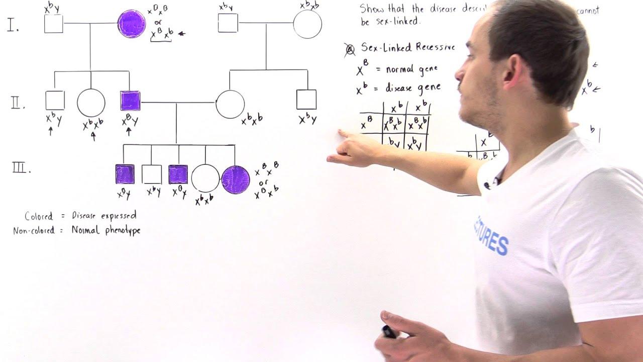 Pedigree Analysis For Autosomal Dominant Traits Youtube